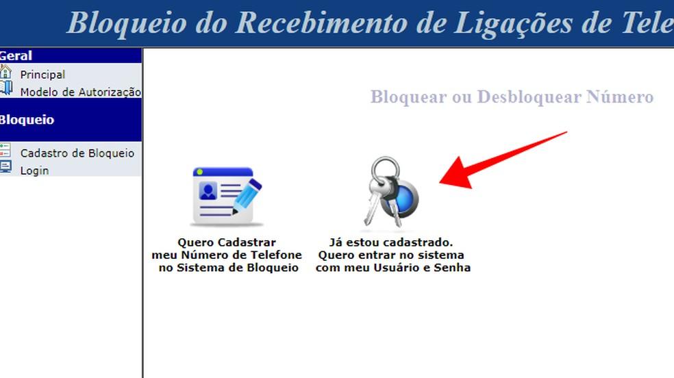 Altere dados no sistema de bloqueio de telemarketing do Procon-SP — Foto: Reprodução/Paulo Alves