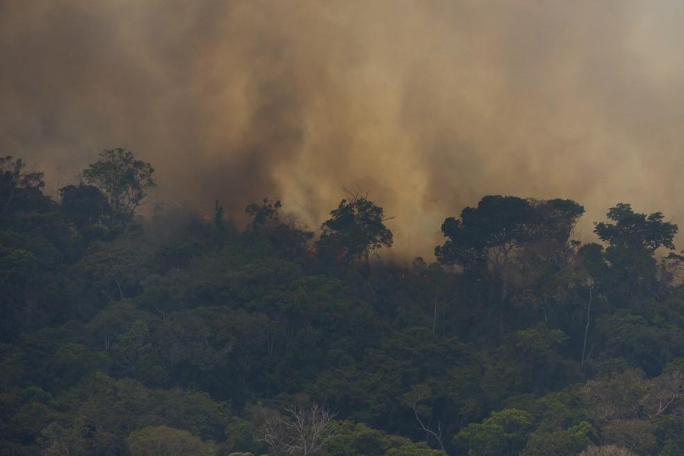 Queimadas na Amazônia - fogo consome vegetação perto de Porto Velho na tarde de 23 de agosto de 2019 — Foto: AP Foto / Victor R. Caivano