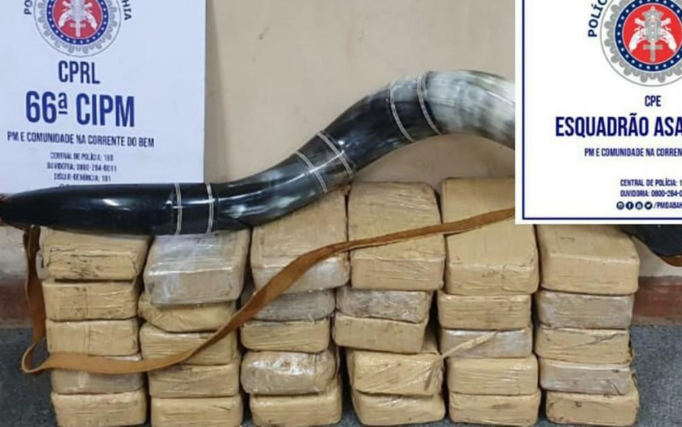 Com ajuda de cão farejador, polícia acha 30 tabletes de pasta base de cocaína dentro de carro após perseguição na BA — Foto: SSP-BA / Divulgação