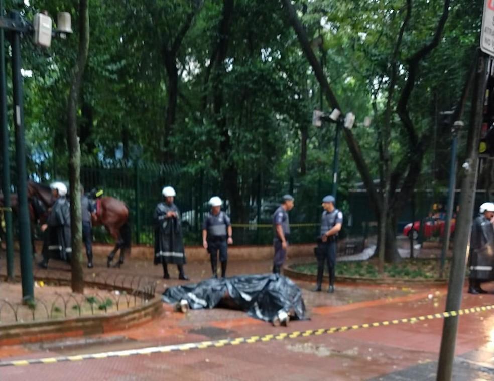 Cavalo da PM morre eletrocutado na Praçã da República, no Centro de SP — Foto: Arquivo pessoal