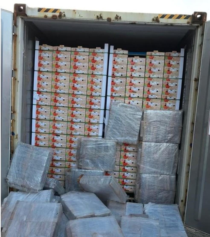 Porto de Natal: Quase 704 kg de cocaína foram encontrados dentro de container carregado de mangas que seguia para a Europa — Foto: PF/Divulgação