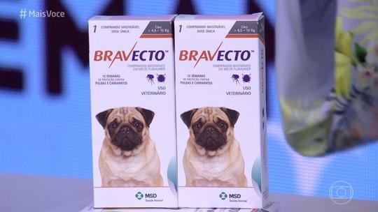 Saiba como proteger seu cão contra carrapatos e pulgas por 12 semanas