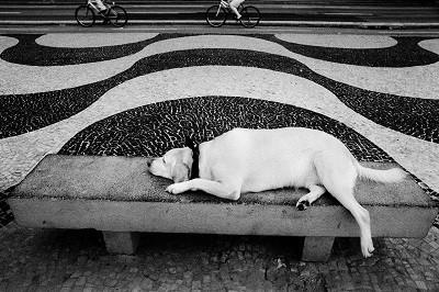 Dez fotos da série 'Copacabana', da fotógrafa carioca Kitty Paranaguá