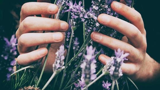 Aromaterapia na Primavera: os benefícios dos óleos essenciais nesta estação