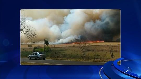 Escola dispensa alunos após fumaça de incêndio em mato invadir prédio