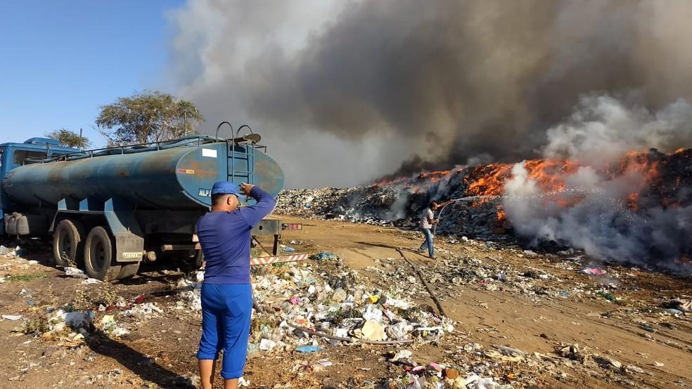 No segundo registro deste ano, o Corpo de Bombeiros informou que cerca de 15% do local foi destruído pelo fogo — Foto: Totó Moreira/Secretaria de Serviços Urbanos/Arquivo