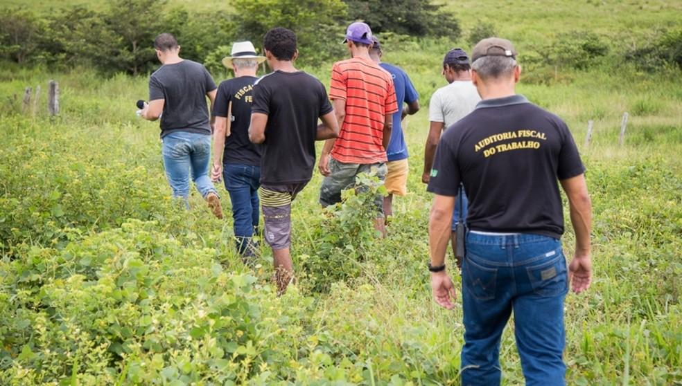 Resgates ocorreram em janeiro, março, junho, julho e setembro de 2017. (Foto: MTE/Divulgação)
