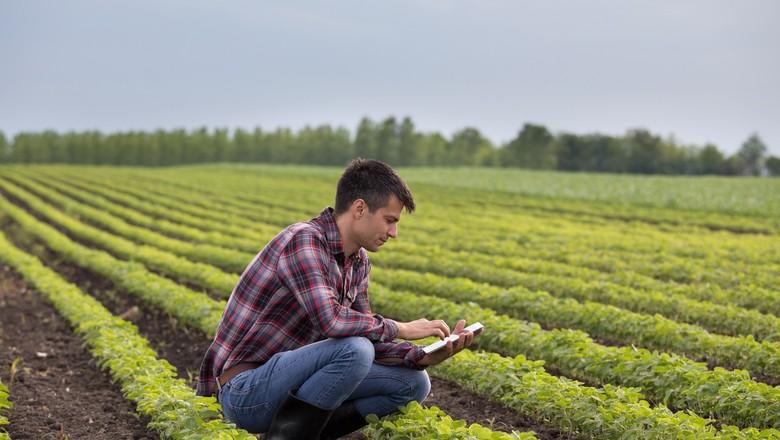 AGRICULTURA-PRODUTOR-INOVACAO-DIGITAL-SATIS-SOJA-TECNOLOGIA (Foto: Getty Images)