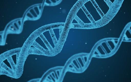Genoma da população brasileira será mapeado pela primeira vez
