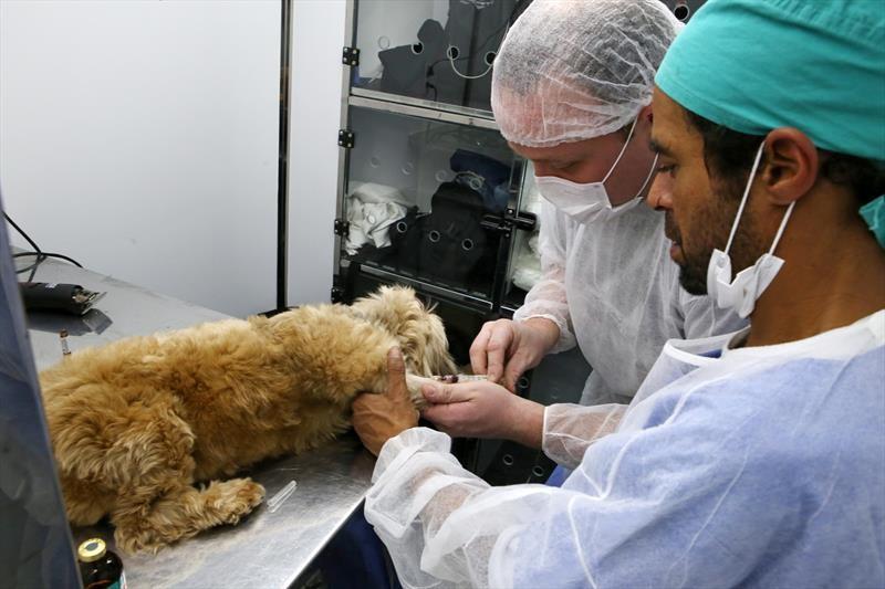 Prefeitura de Viçosa doa veículo para  Sociedade de Proteção aos Animais