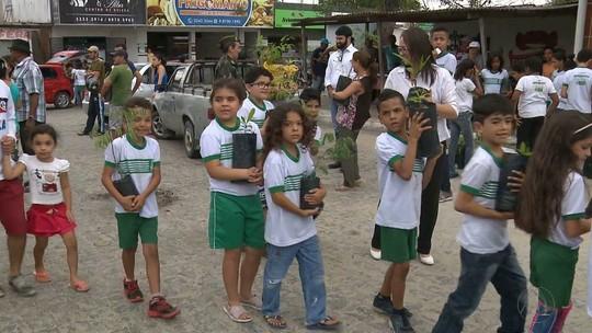 TV Paraíba celebra Dia da Árvore em Campina Grande