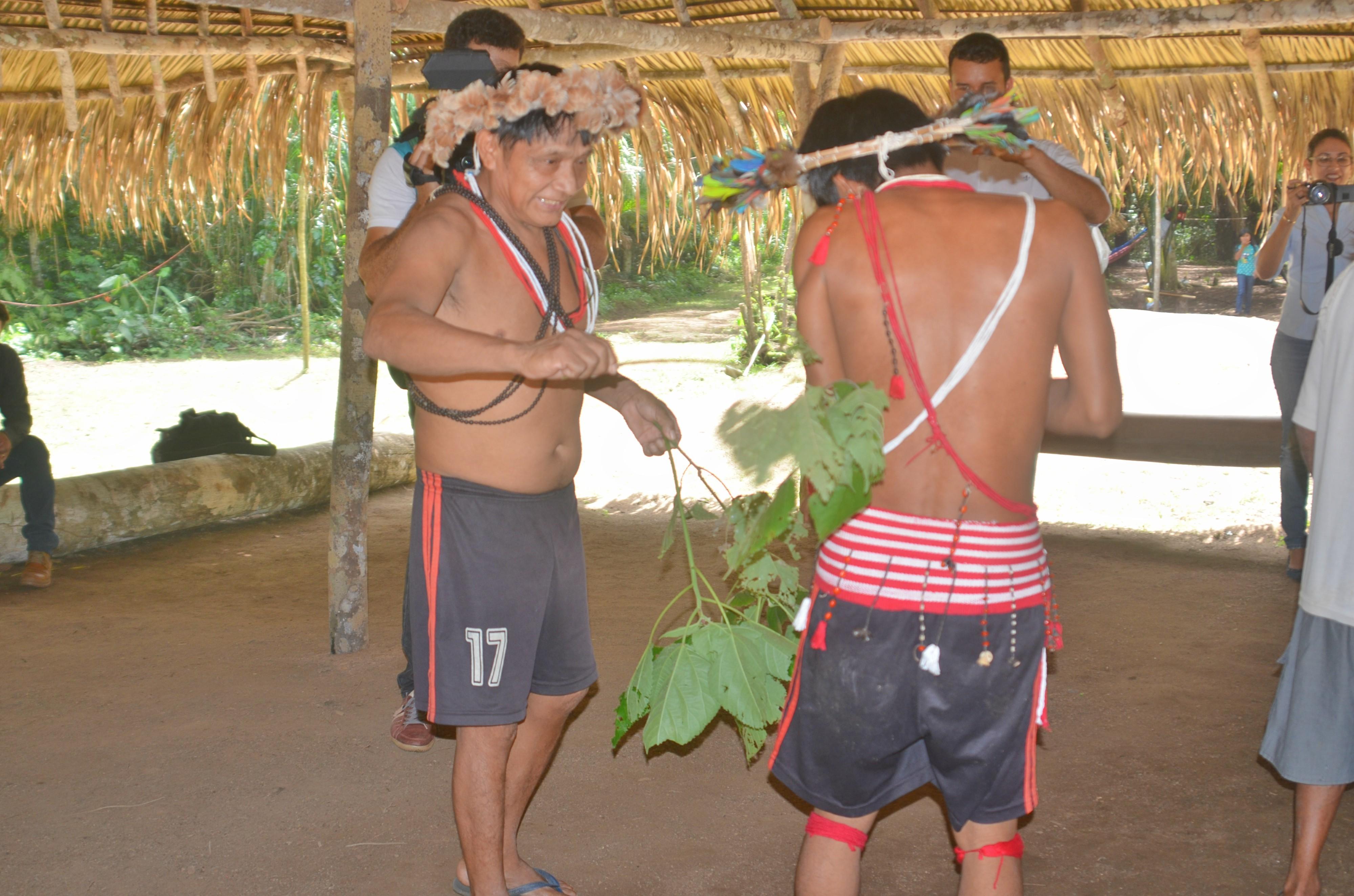 Indígenas realizam ritual da urtiga para celebrar início da colheita em Cacoal
