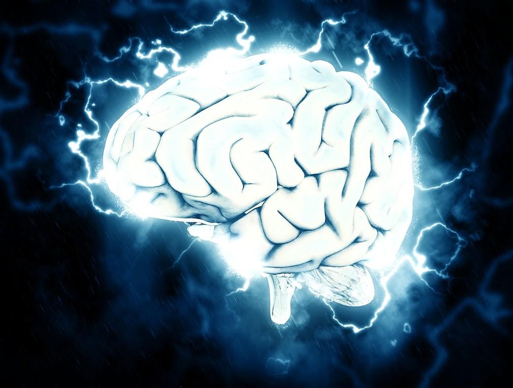 Diamond e sua equipe estudaram a importância dos astrócitos, um tipo de célula cerebral. — Foto: Pixabay