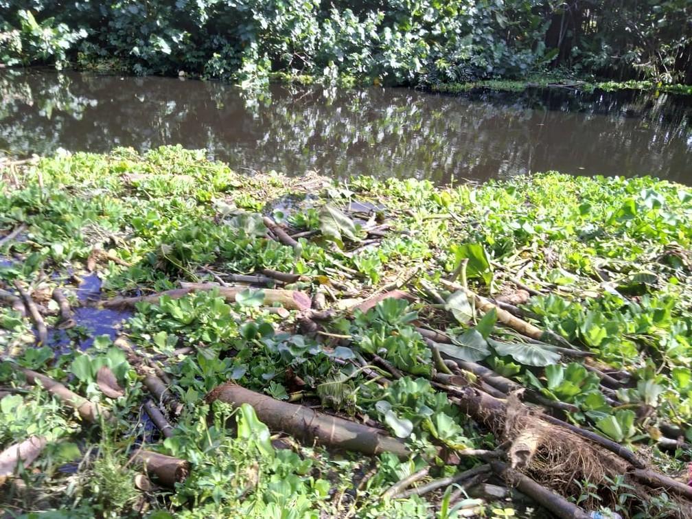 Rio Pium: Corpo de Marcos Guilherme foi encontrado neste trecho — Foto: Julianne Barreto/Inter TV Cabugi