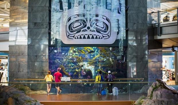 Aeroporto de Vancouver tem um aquário para entreter os passageiros (Foto: Reprodução/Instagram)