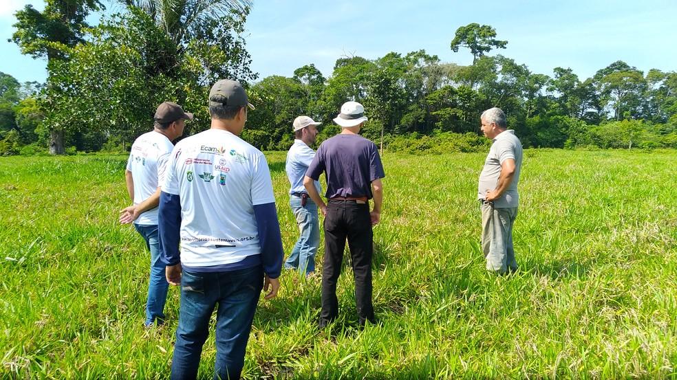 Dia de campo de pecuaristas do projeto pecuária sustentável, em Oriximiná — Foto: Ecam/Divulgação