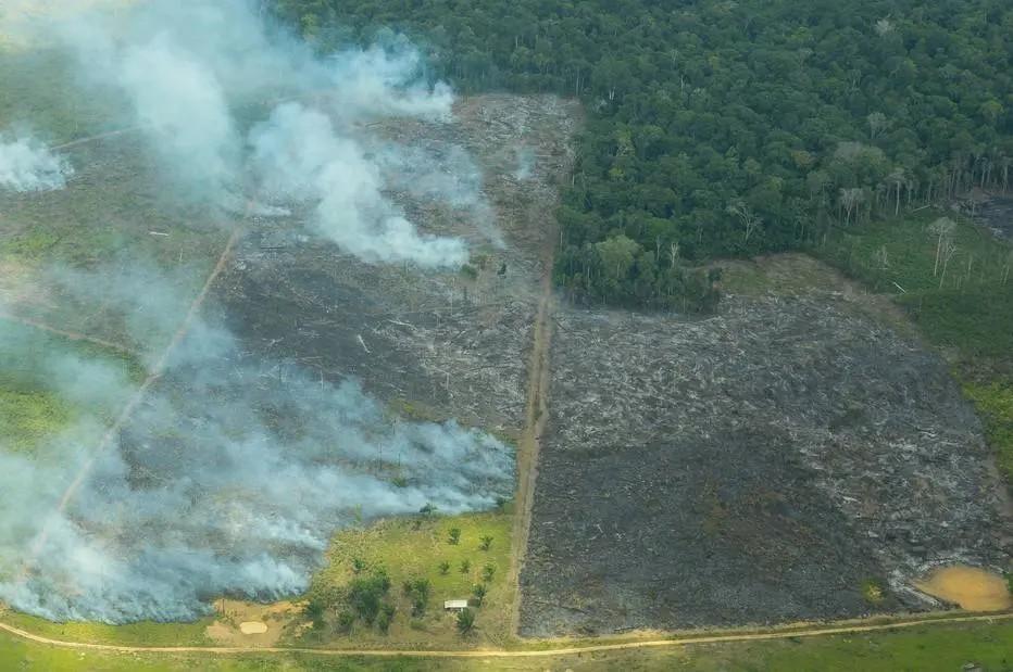 Floresta em chamas: problema afeta turismo no Amazonas (Foto: Estado Conteúdo)