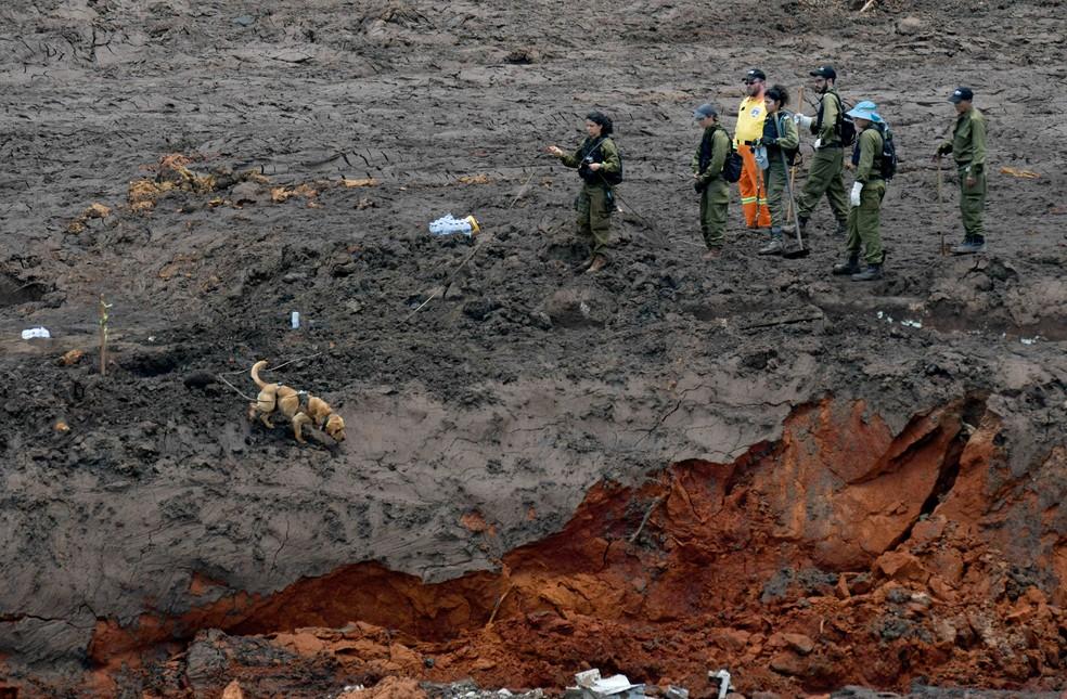 Militares israelenses buscam vítimas da tragédia com barragem da Vale em Brumadinho — Foto: Washington Alves/Reuters