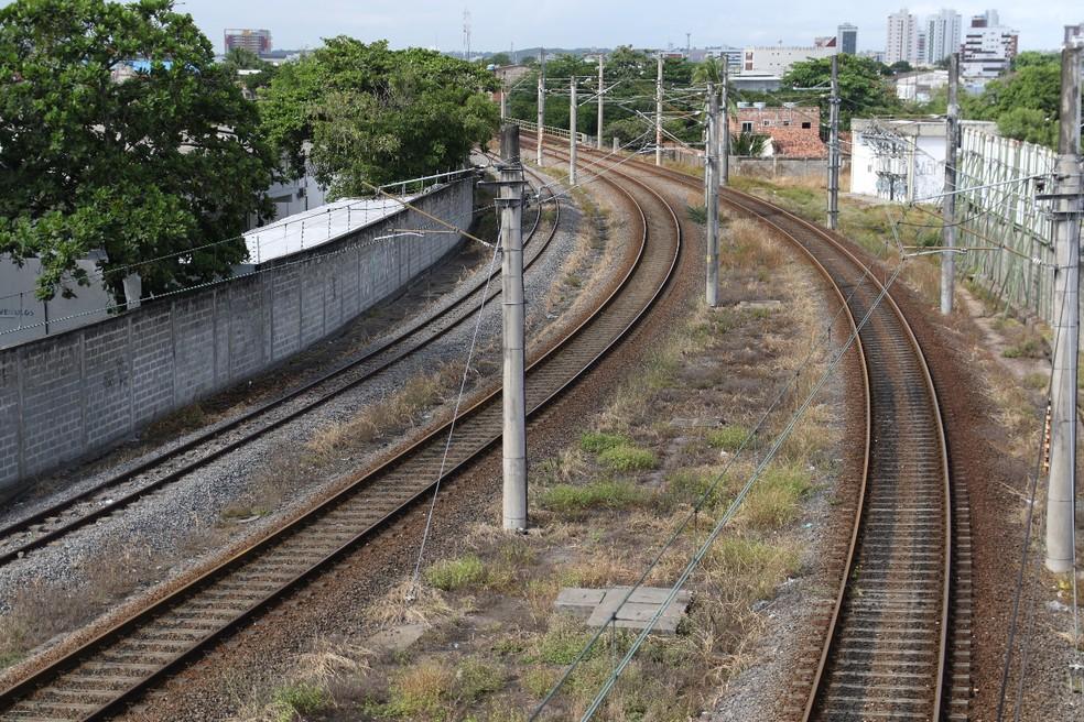 Atropelamento ocorreu entre as estações Alto do Céu e Curado, na Linha Centro do Metrô do Recife — Foto: Marlon Costa/Pernambuco Press
