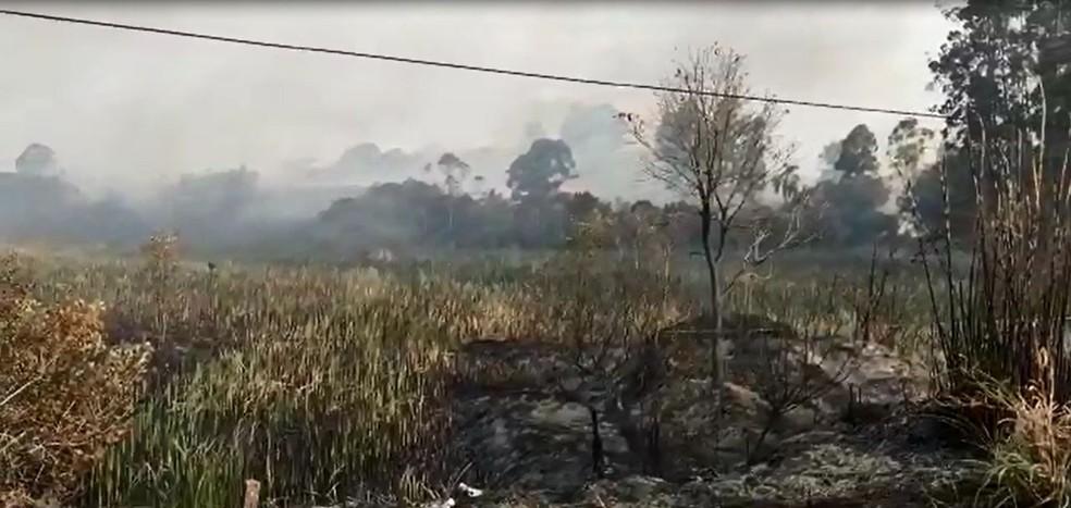 Área atingida pela chamas em Itatinga (SP) já chega a 500 mil metros quadrados  — Foto: Arquivo pessoal