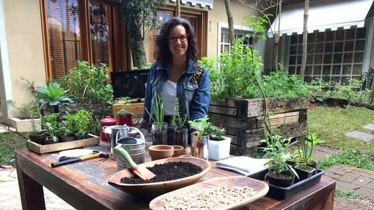 Veja como preparar uma horta caseira