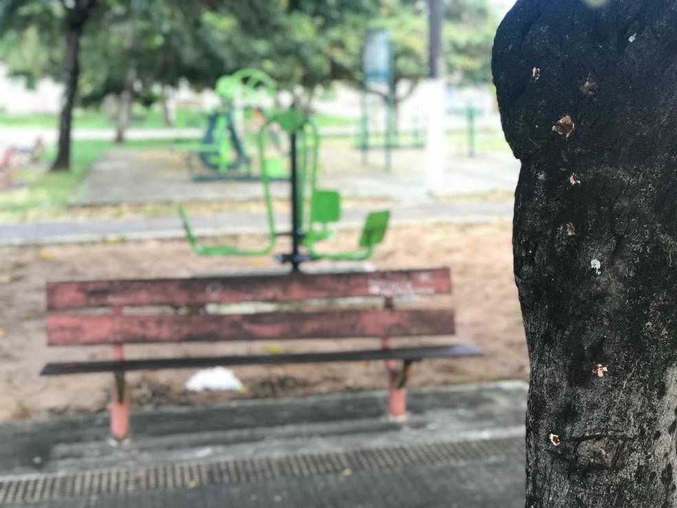 Policial foi morto em praça na Zona Sul de Natal; marcas de tiros ficaram em árvore (Foto: Kleber Teixeira/Inter TV Cabugi)