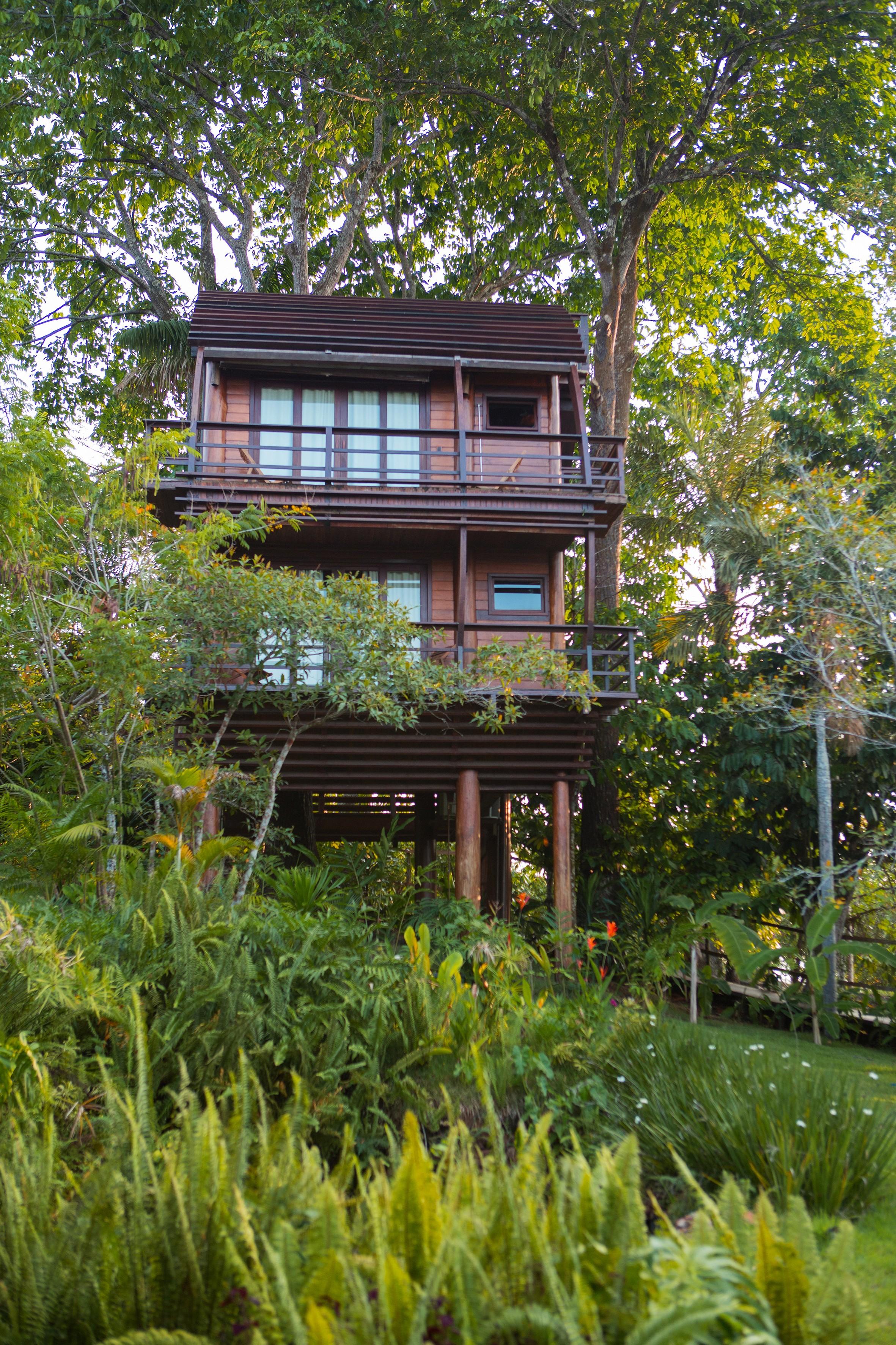 O Mirante do Gavião Lodge, no Rio Negro, Amazônia  (Foto: Divulgação)