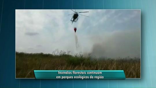 Aviões pulverizadores reforçam combate a incêndio no Parque Nacional de Ilha Grande