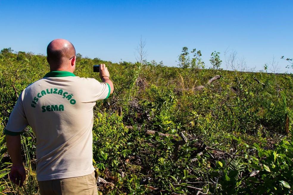 Operação contra crimes ambientais aplica mais de R$ 6,5 milhões em multas em 15 cidades de MT (Foto: Sema)