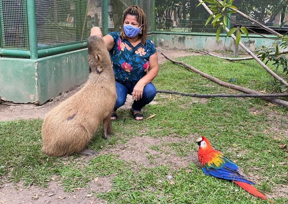 Lucimar Carvalho, educadora ambiental, é uma das responsáveis pelo cuidado dos animais no Bosque — Foto: Caíque Rodrigues/G1 RR