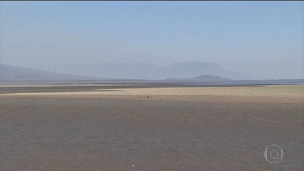 Pantanal enfrenta a maior seca em mais de 50 anos