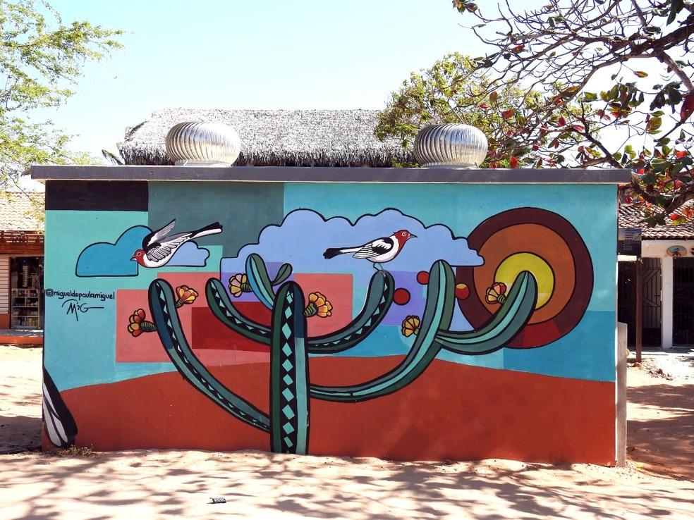 Pinturas em muros de cidades do Nordeste focam na conservação da Caatinga — Foto: Miguel de Paula/Acervo Pessoal
