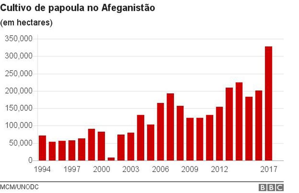 Cultivo de papoula no Afeganistão (Foto: BBC)