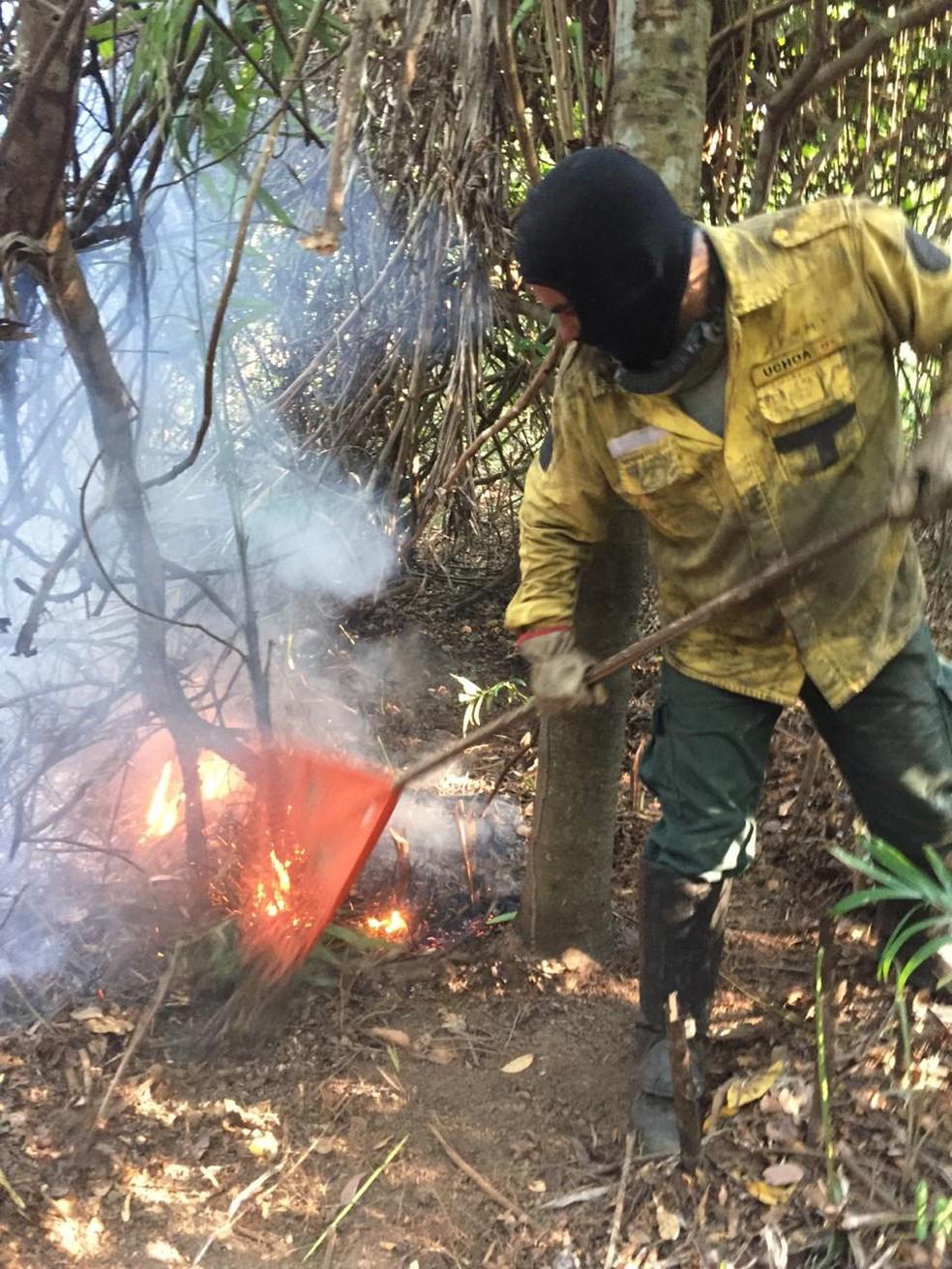 Bombeiros e brigadistas enfrentam o fogo no Pantanal de MS — Foto: Instituto Homem Pantaneiro/Divulgação