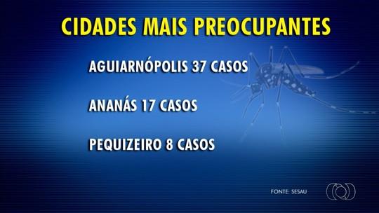 Número de casos de chikungunya em cidades pequenas do TO preocupa