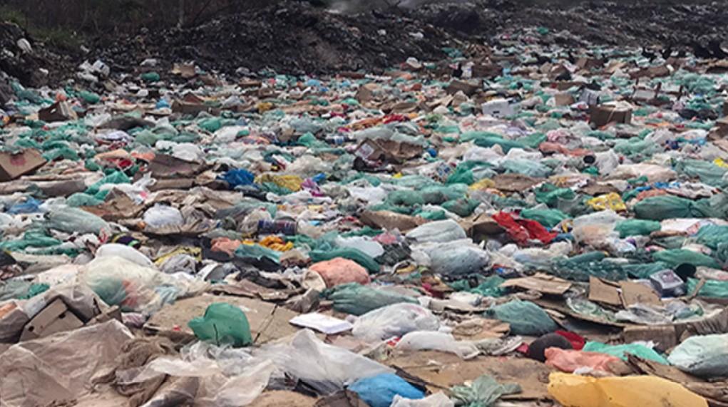 Prefeitura de Portel, no Marajó, é alvo de ação que pede fechamento de 'lixão' da cidade - Notícias - Plantão Diário