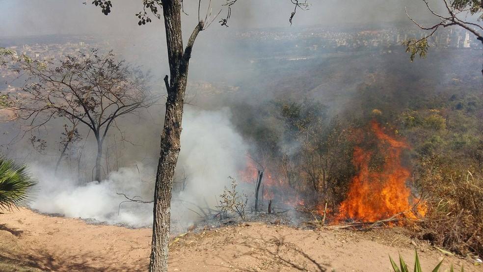 -  Focos de incêndio registrados no Morro das Antenas em Divinópolis  Foto: Anna Lúcia Silva/G1