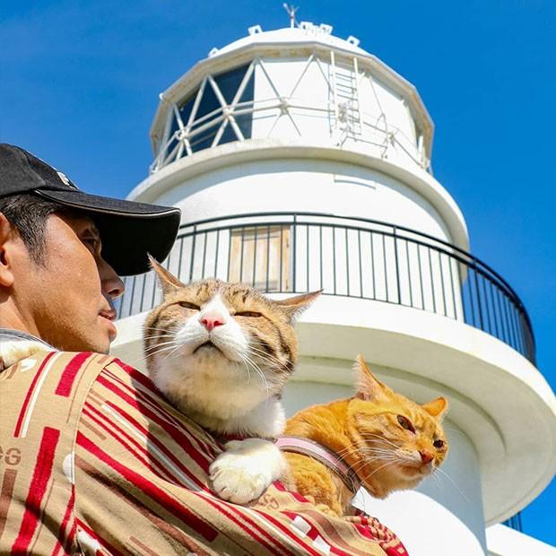 Os dois vêm viajando com seu dono por quase 8 anos. (Foto: Instagram/the.traveling.cats)