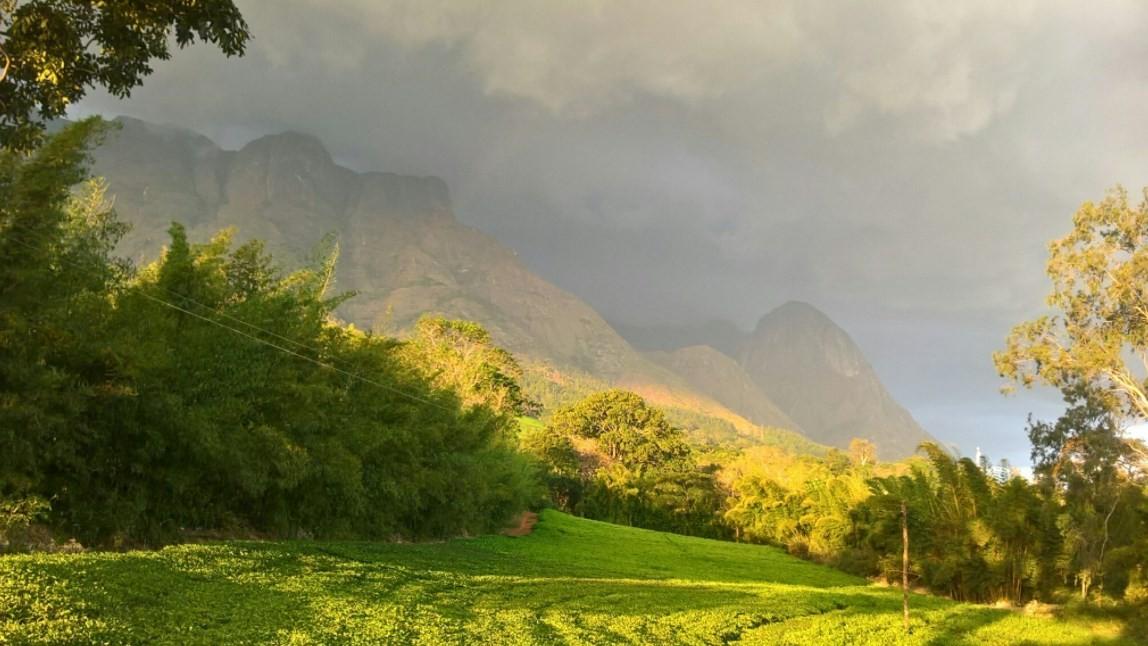 As mortes ocorreram nos arredores do Monte Mulanje, onde aconteceriam rituais satânicos