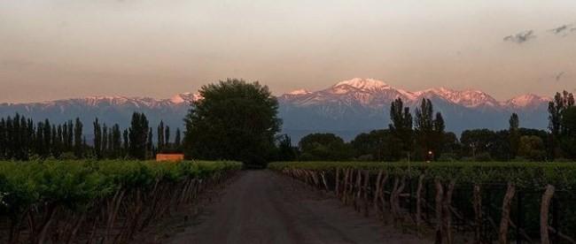 A paisagem deslumbrante da Finca la Anita, em Agrelo