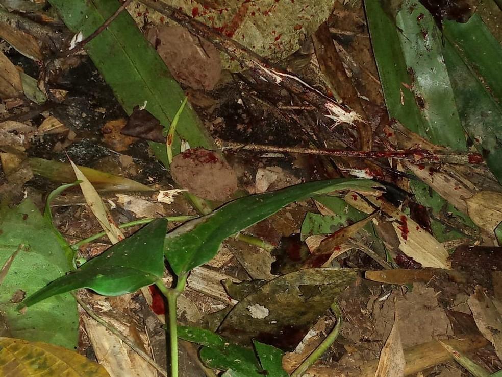 Caso ocorreu no domingo (6) na zona rural do município de Assis Brasil — Foto: Arquivo/PC-AC