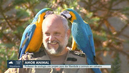Professor desenvolve projeto para que aves criadas em cativeiro possam voar na natureza