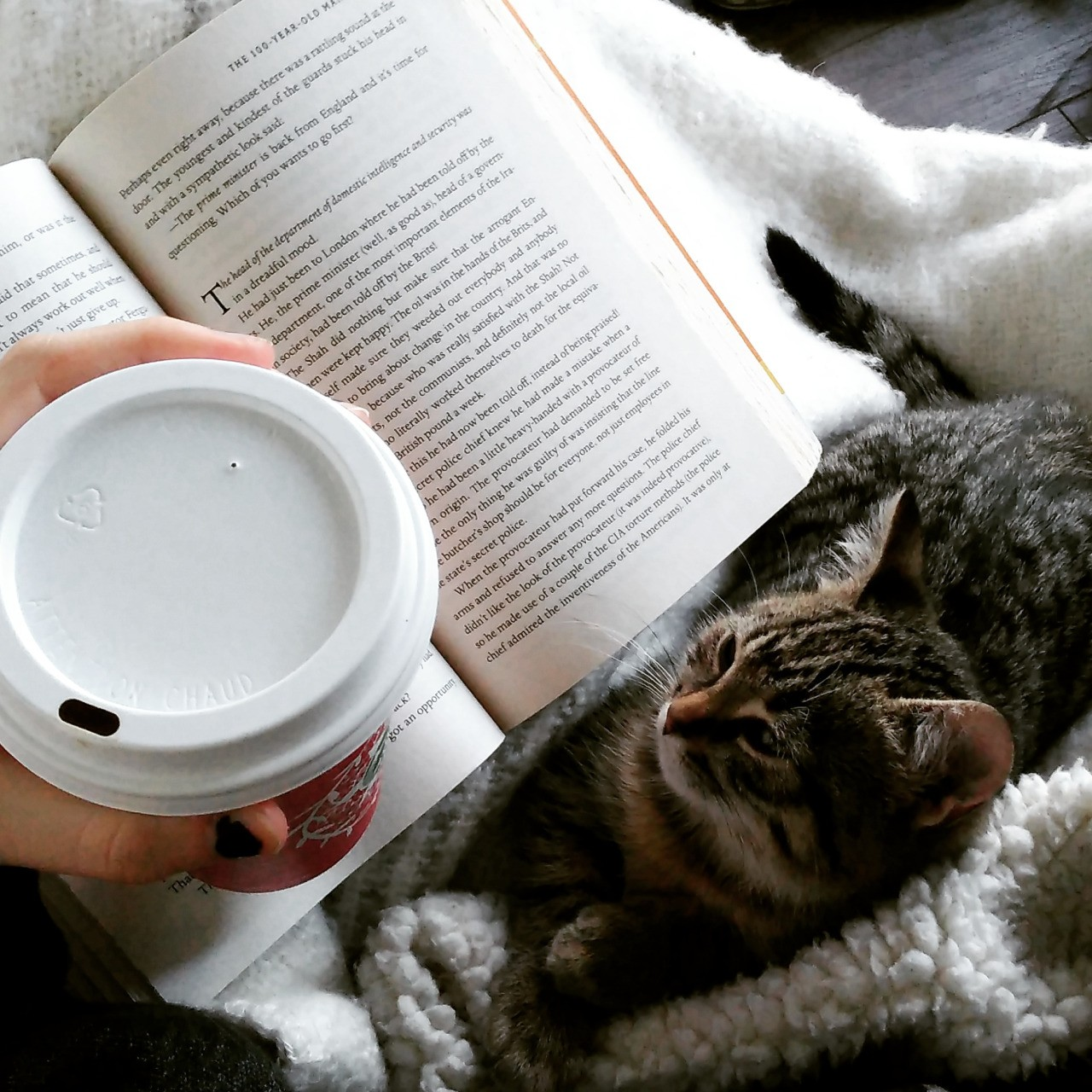 11 livros que todos deveriam conhecer, segundo os leitores