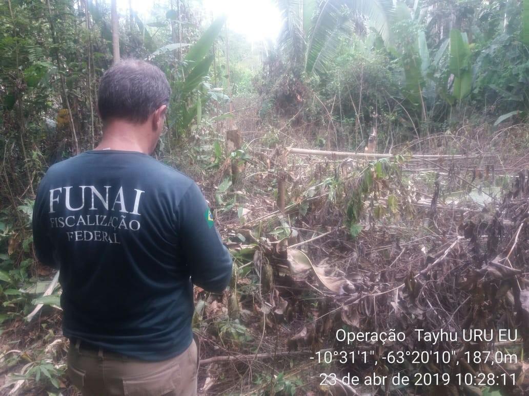 Funai faz operação contra invasão de terra indígena e grilagem em RO; 2 pessoas são presas