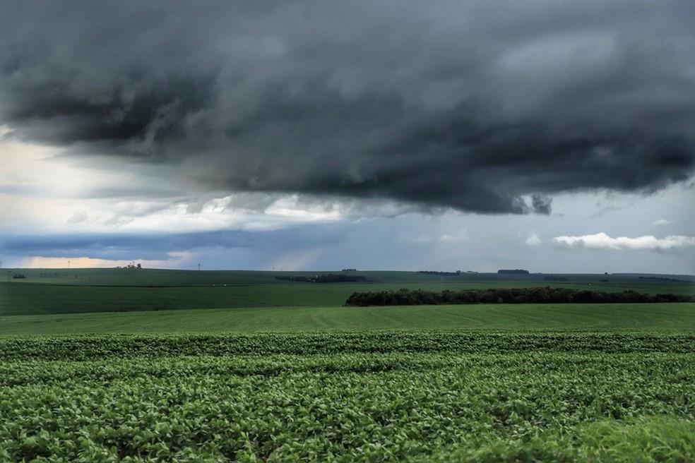 Cidades devem registrar chuvas a partir de quinta-feira (14), segundo Simepar. — Foto: José Fernando Ogura/AEN