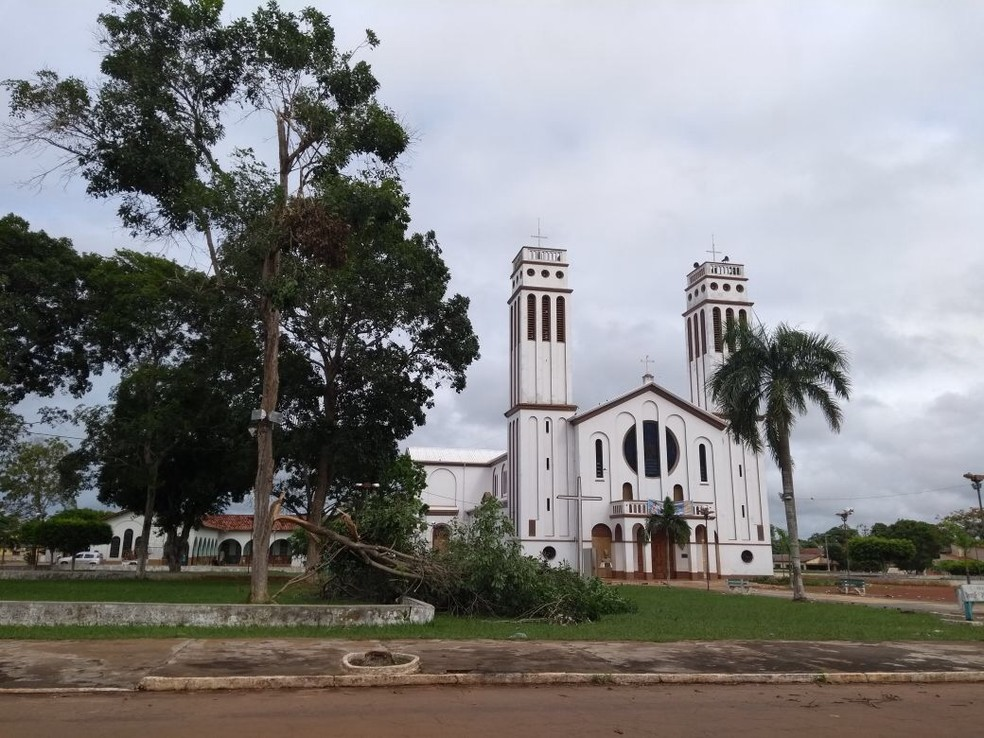 No Bairro Centro, algumas árvores tombaram (Foto: Lena Mendonça/Rádio CBN)