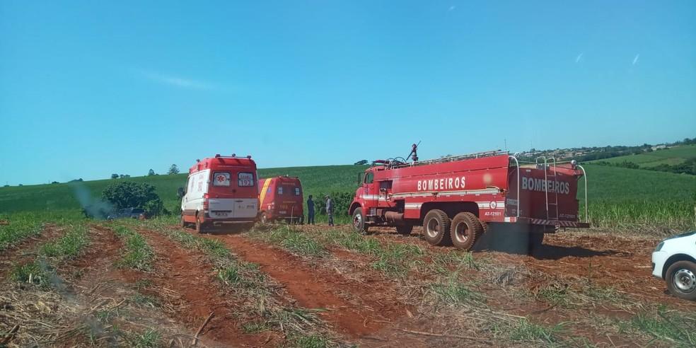 Outros trabalhadores presenciaram a cena e acionaram o resgate — Foto: Central da Notícia/Divulgação