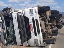 Nove cavalos morrem em acidente com caminhão na Bahia (PRE / Divulgação )
