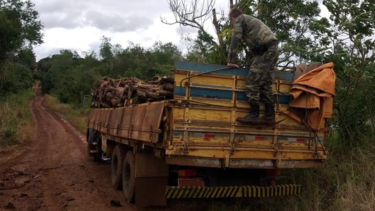 Foto: (Polícia Ambiental/Divulgação)