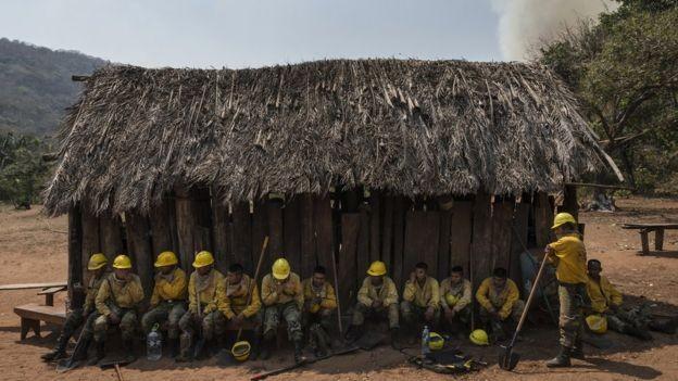 Voluntários participam do combate às chamas para preservar um patrimônio ambiental da Bolívia (Foto: MARCELO PÉREZ DEL CARPIO VIA BBC)